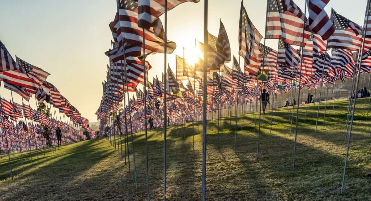 Rows of American flags on sunlit hill